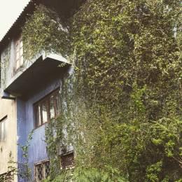 4000 sqft, 5 bhk Villa in Builder Ottati Cottage Old Khandala Road, Pune at Rs. 6.5000 Cr