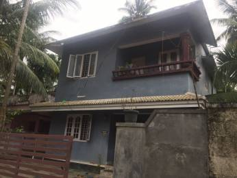 1400 sqft, 3 bhk IndependentHouse in Builder Project Thamarayoor Mammiyoor Masjid Road, Thrissur at Rs. 49.0000 Lacs