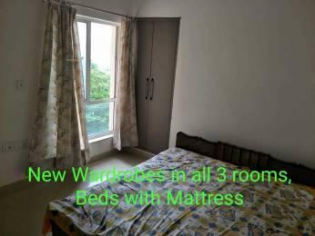 1645 sqft, 3 bhk Apartment in Orris Carnation Residency Sector 85, Gurgaon at Rs. 18000