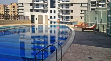 3900 sqft, 4 bhk Apartment in DLF Pinnacle Sector 43, Gurgaon at Rs. 3.8500 Cr