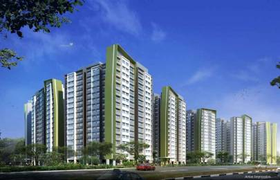 600 sqft, 1 bhk Apartment in Builder Project Naigaon East, Mumbai at Rs. 30.0000 Lacs