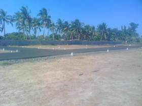 3,100 sq ft  Residential plot in Builder Sai Tech City