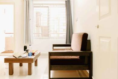 550 sqft, 1 bhk Apartment in Builder Nestor StayAbode Ejipura, Bangalore at Rs. 34000