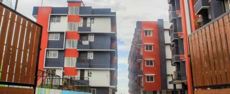 500 sqft, 2 bhk Apartment in Victoria Saidhaan Enclave Kovai Pudur, Coimbatore at Rs. 23.0000 Lacs