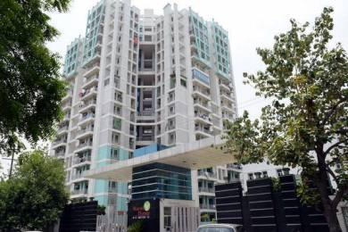 1300 sqft, 2 bhk Apartment in Gardenia Grace Sector 61, Noida at Rs. 16000