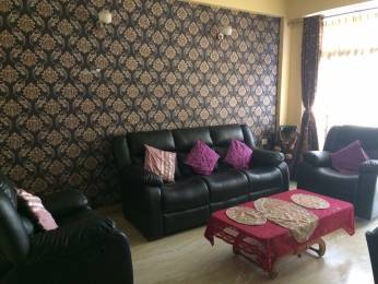2200 sqft, 3 bhk IndependentHouse in Builder Project Sector 51, Noida at Rs. 35000