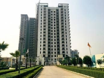1264 sqft, 2 bhk Apartment in Eldeco Accolade Sector 2 Sohna, Gurgaon at Rs. 58.0000 Lacs