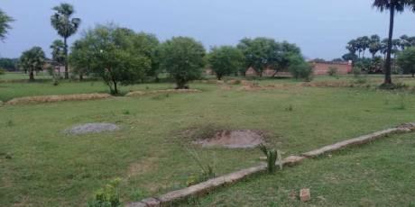 1250 sqft, Plot in Builder Akash puram colony Ramnagar, Varanasi at Rs. 15.0000 Lacs