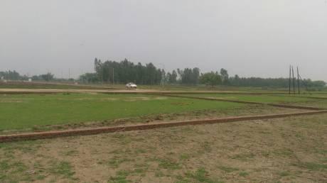 1250 sqft, Plot in Builder SHINE VALLEY NAGRAM ROAD Mohanlalganj, Lucknow at Rs. 6.8875 Lacs