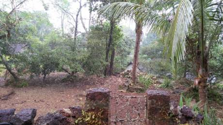 6620 sqft, Plot in Builder Property in Aldona Goa 6620sqft Aldona, Goa at Rs. 74.0000 Lacs