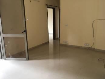 1250 sqft, 1 bhk Apartment in Builder Ranjit Vihar 1 Sec 22 Dwarka New Delhi Sector 22 Dwarka, Delhi at Rs. 10500