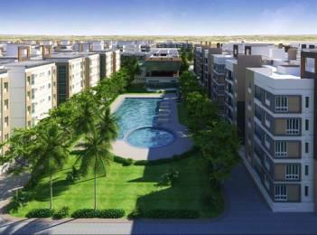 1400 sqft, 3 bhk Apartment in Trident Galaxy Kalinga Nagar, Bhubaneswar at Rs. 58.0000 Lacs