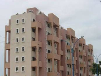 600 sqft, 1 bhk Apartment in Magarpatta Heliconia Hadapsar, Pune at Rs. 17000