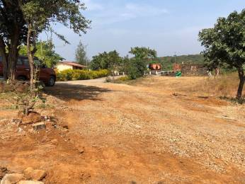 3250 sqft, Plot in Builder Project Alibag, Raigarh at Rs. 13.5000 Lacs