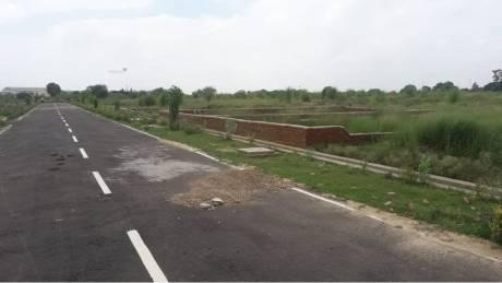 1000 sqft, Plot in Builder Shikhar group Jhalwa, Allahabad at Rs. 1.2060 Lacs