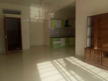 1750 sqft, 3 bhk Apartment in Builder Project HSR Layout, Bangalore at Rs. 35000