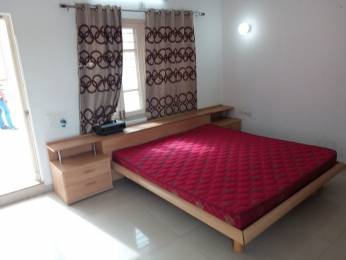 1800 sqft, 3 bhk Apartment in Builder Area colony Arera Colony, Bhopal at Rs. 21000
