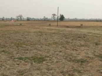 1000 sqft, Plot in Builder Pragyance twon Lucknow Road, Allahabad at Rs. 7.0100 Lacs
