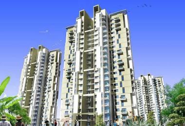 1800 sqft, 3 bhk Apartment in BPTP Spacio Park Serene Sector 37D, Gurgaon at Rs. 80.0000 Lacs
