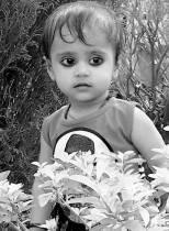 ANANYA REAL STATE DELHI