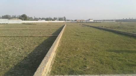 990 sqft, Plot in Builder eklavya group Naini, Allahabad at Rs. 13.7500 Lacs