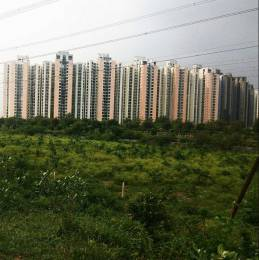 17452 sqft, Plot in Builder AGRICULTURE LAND Noida Greater Noida Expressway, Noida at Rs. 1.0000 Cr