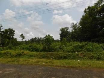 747 sqft, Plot in Builder Project Kattakada Ottasekharamangalam Road, Trivandrum at Rs. 2.5000 Lacs