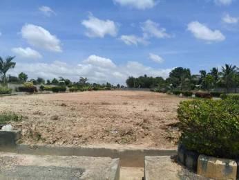 1200 sqft, Plot in Builder Project Devanhalli Road, Bangalore at Rs. 36.0000 Lacs
