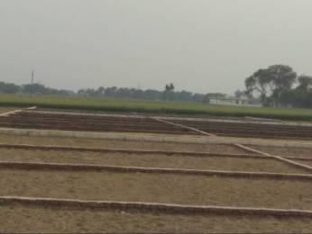 1000 sqft, Plot in Builder Project kachnar, Varanasi at Rs. 7.5100 Lacs