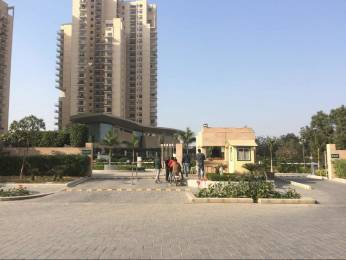 1843 sqft, 3 bhk Apartment in Ireo Uptown Sector 66, Gurgaon at Rs. 1.6700 Cr