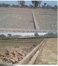 1000 sqft, Plot in Builder chandrak kashiyana Ramnagar Road, Varanasi at Rs. 8.5000 Lacs