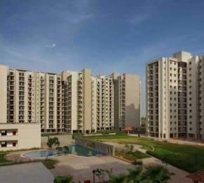 1864 sqft, 3 bhk Apartment in Umang Summer Palms Sector 86, Faridabad at Rs. 75.0000 Lacs