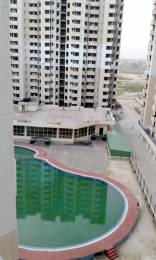 1450 sqft, 3 bhk Apartment in SRS Royal Hills Sector 87, Faridabad at Rs. 50.0000 Lacs
