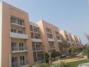1189 sqft, 2 bhk Apartment in BPTP Park Floors II Sector 76, Faridabad at Rs. 35.0000 Lacs
