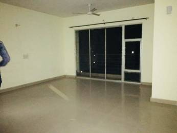 1295 sqft, 2 bhk Apartment in Ansal Celebrity Meadows Gomti Nagar, Lucknow at Rs. 55.0000 Lacs