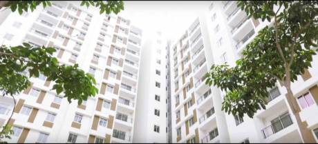 966 sqft, 2 bhk Apartment in TATA New Haven Nelamangala Town, Bangalore at Rs. 55.0000 Lacs