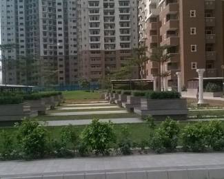 525 sqft, 1 bhk Apartment in Nimbus Hyde Park Sector 78, Noida at Rs. 32.5000 Lacs
