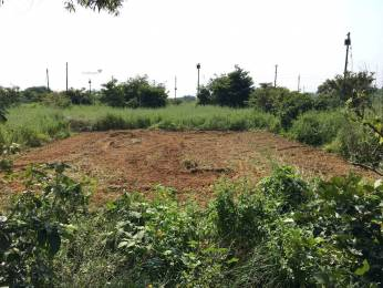 3100 sqft, Plot in Builder Project New Moradabad, Moradabad at Rs. 54.7200 Lacs