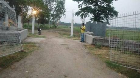 1440 sqft, Plot in Builder Shine Green Paradise 2 Ayodhyanagar, Kolkata at Rs. 4.3344 Lacs