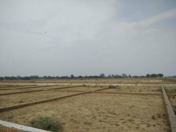 1000 sqft, Plot in Rainbow Takshasila Enclave Bheemili, Patna at Rs. 6.5000 Lacs