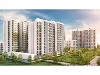 825 sqft, 2 bhk Apartment in Signature Solera 2 Sector 107, Gurgaon at Rs. 23.5000 Lacs