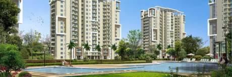 1120 sqft, 2 bhk Apartment in Orris Carnation Residency Sector 85, Gurgaon at Rs. 10000