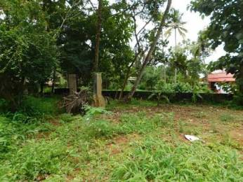 5670 sqft, Plot in Builder Project Nemom, Trivandrum at Rs. 58.5000 Lacs