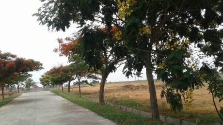 1500 sqft, Plot in NBR NBR Green Valley Bagalur, Bangalore at Rs. 11.9900 Lacs