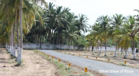 1200 sqft, Plot in Builder Project Kelambakkam, Chennai at Rs. 32.4000 Lacs