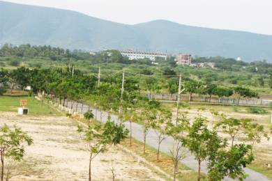 1200 sqft, Plot in Builder Gajalakshmi green City DAMINEDU, Tirupati at Rs. 19.9800 Lacs