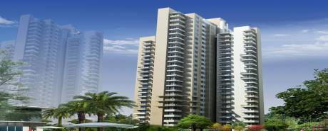 1534 sqft, 2 bhk Apartment in Alpha Gurgaon One 84 Sector 84, Gurgaon at Rs. 76.0000 Lacs