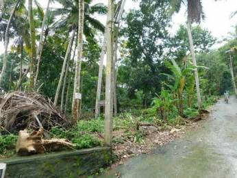 4356 sqft, Plot in Builder Project Vilappilsala Malappanamcode Kattakkada Road, Trivandrum at Rs. 22.5000 Lacs