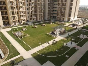 1005 sqft, 3 bhk BuilderFloor in BPTP Park Elite Premium Sector 84, Faridabad at Rs. 27.0000 Lacs