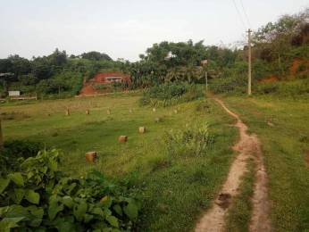 4500 sqft, Plot in Builder Project Narengi Tinali, Guwahati at Rs. 12.0000 Lacs